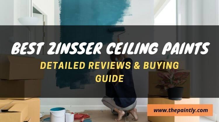 Best Zinsser Ceiling Paint and Primer